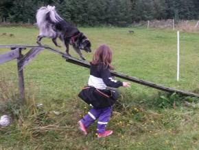 barn og hund september